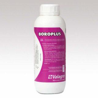 Boroplus 1 l 800×800